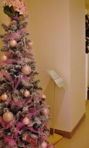 Pink (484x800) (2)